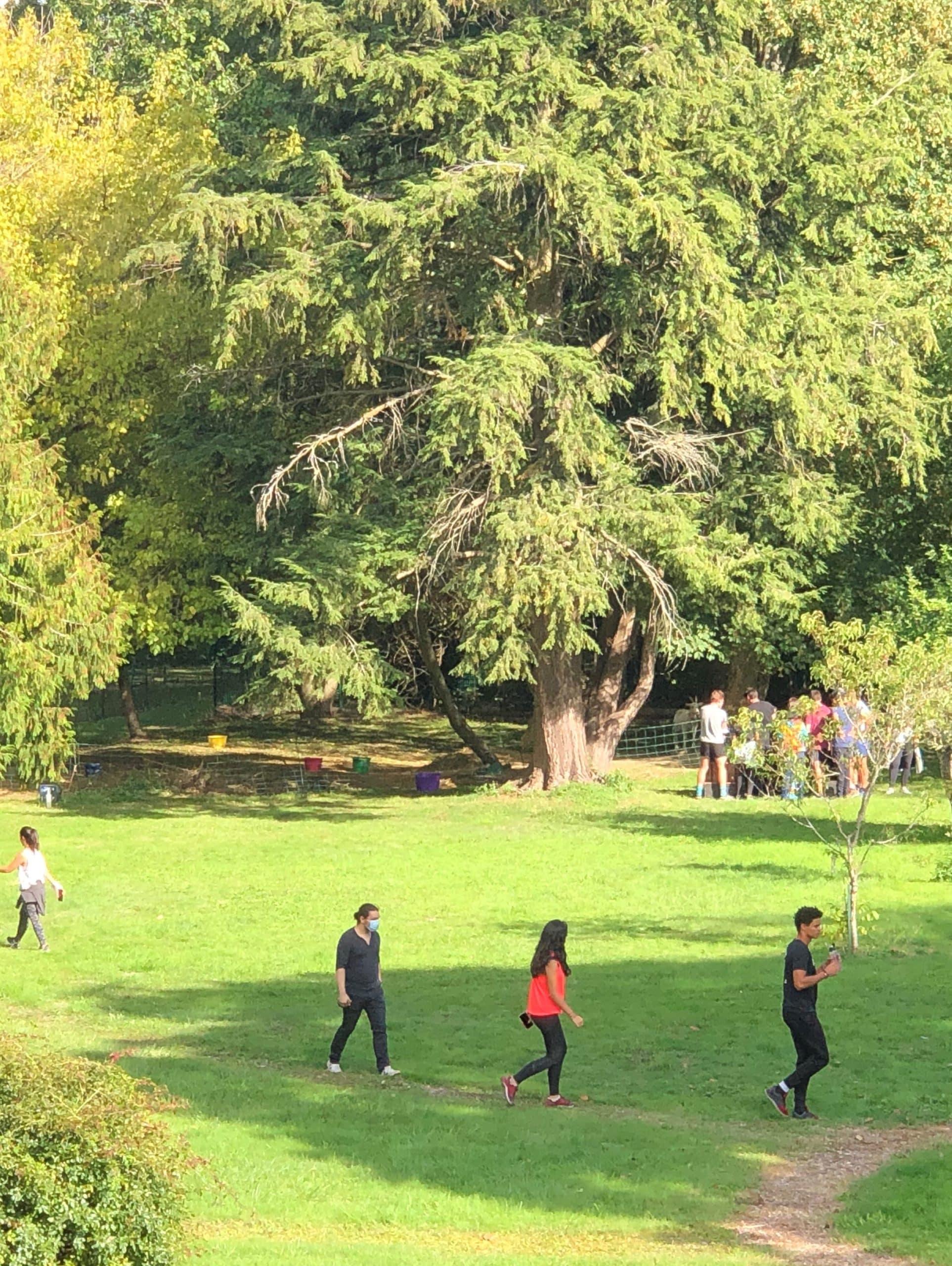 escape game dans le parc